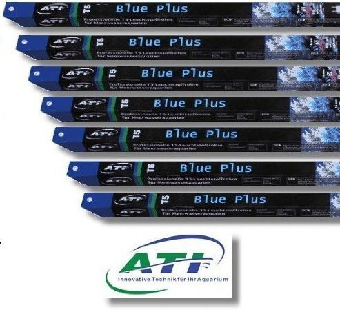 ATI Blue Plus T5 buis