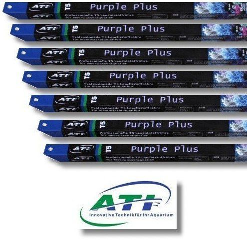 ATI Purple Plus T5 buis