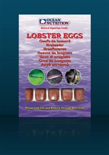 Ocean Nutrition Lobster Eggs Blister (20 cubes) 100 gr
